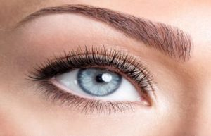 New York NY Plastic Surgeon for Eyes