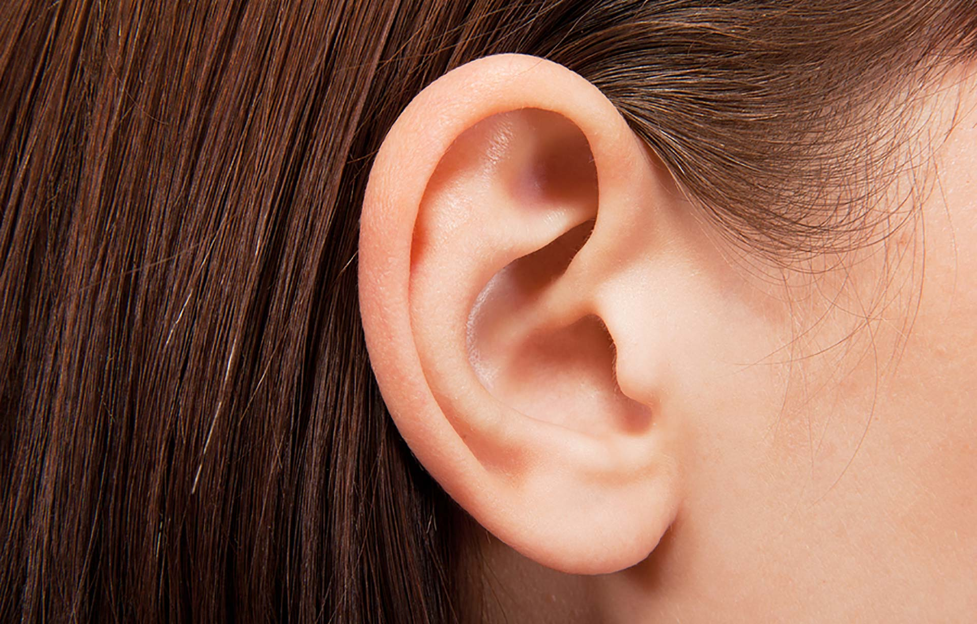 Ear Photo Gallery
